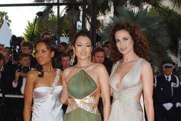 Andie MacDowell 60th Cannes Film Festival - Opening Night