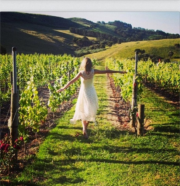 Taylor Swift wandered through a vineyard because of course.