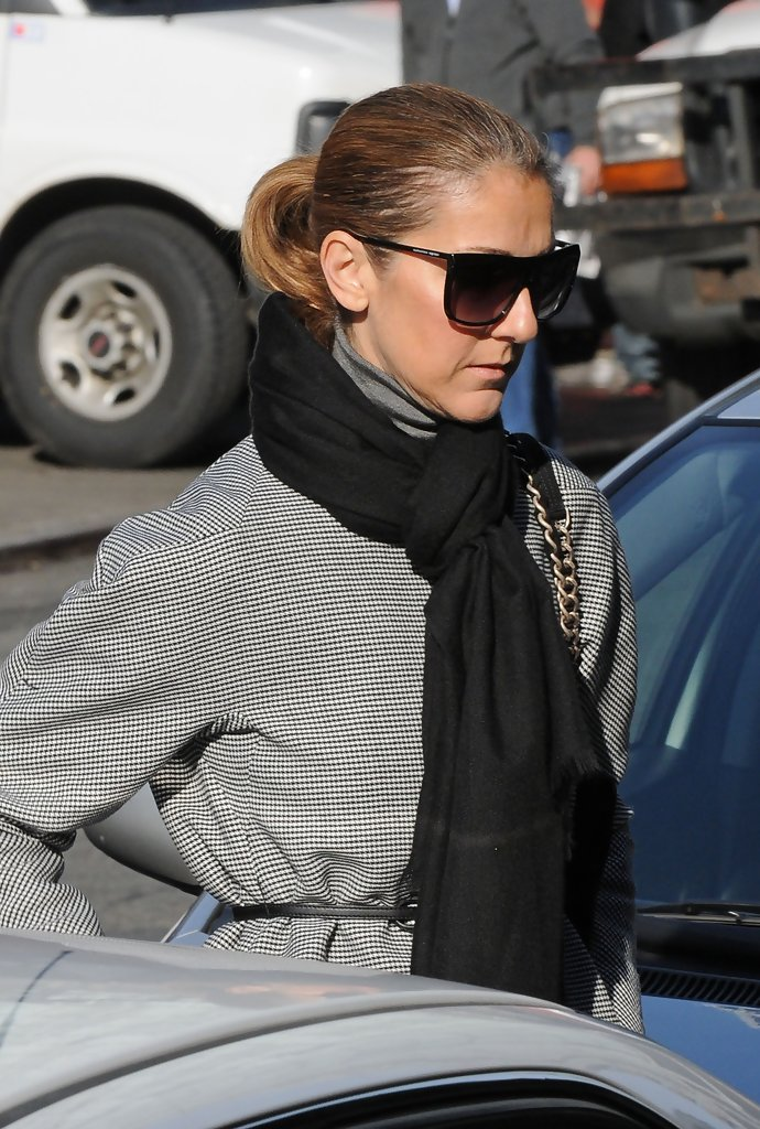 Celine dion photos photos celine dion in the meatpacking for Dion hair salon