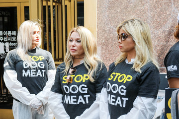Donna D'errico Celebrities Engage In A Silent Protest at the Korean Consulate
