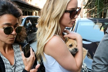 Jennifer Lawrence Jennifer Lawrence Arrives to Her Hotel With a Puppy