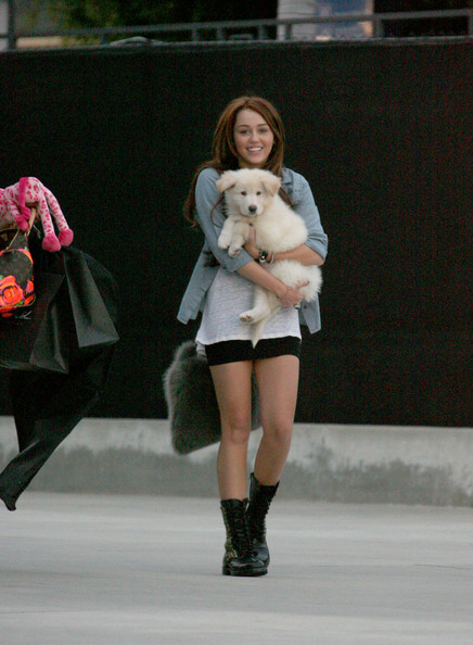 Miley Cyrus carries her new puppy in her arms as she makes her way into Maxfield department store.