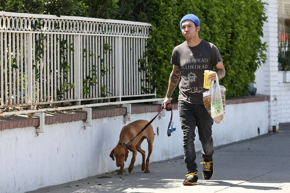 Pete Wentz Goes to Lunch with His Dog