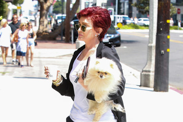 Sharon Osbourne Sharon Osbourne Goes Out and About With Her Dog Bella