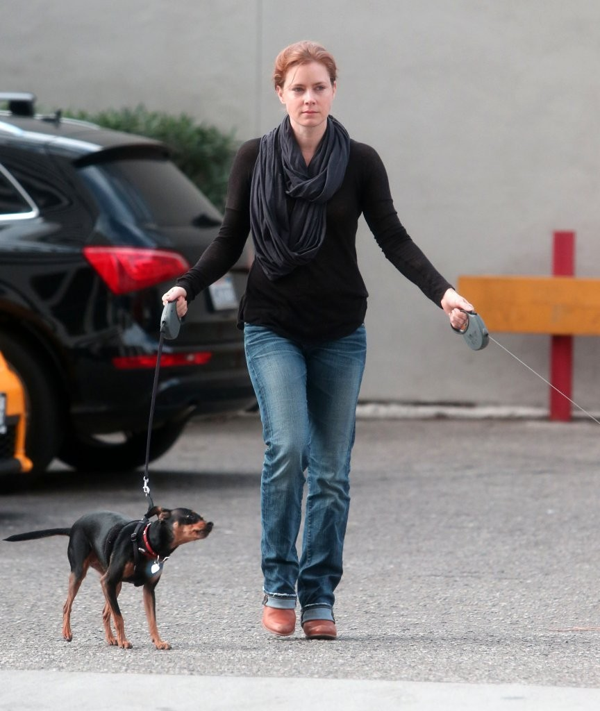 Amy Adams Takes Her Dogs For a Thanksgiving Walk