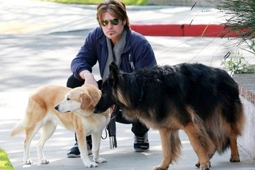Billy Ray Cyrus Billy Ray Cyrus Out With His Dogs In Toluca Lake