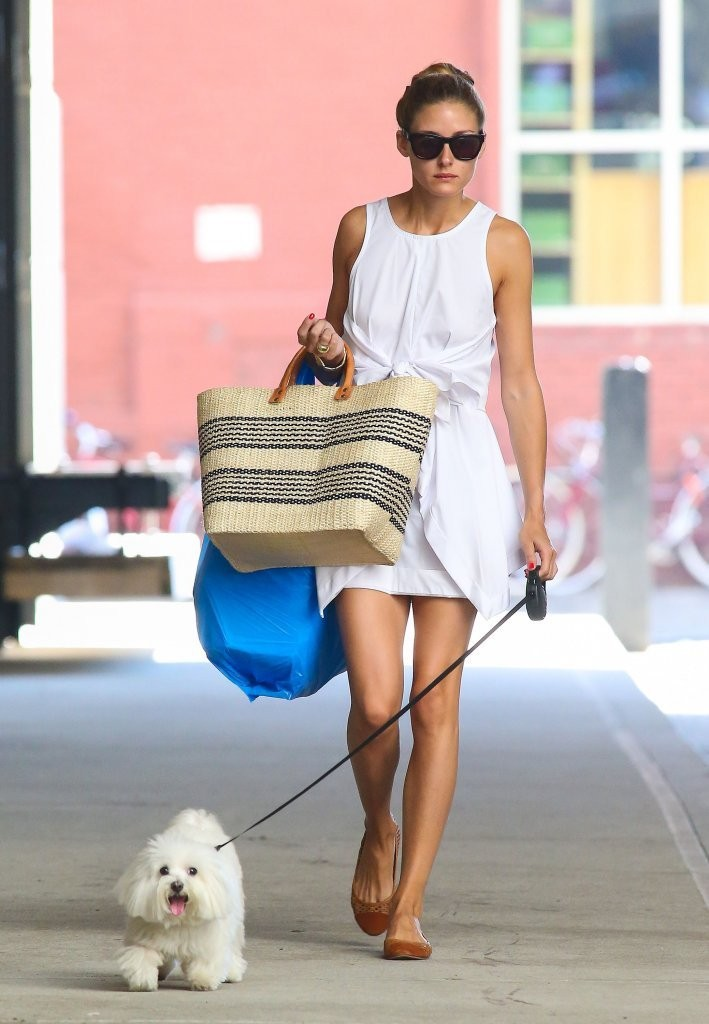 Olivia Palermo Walks Her Dog in NYC — Part 2