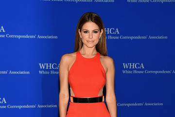 The Best Looks from the White House Correspondents' Dinner 2015