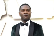 David Oyelowo attends the 91st Annual Academy Awards at Hollywood and Highland on February 24, 2019 in Hollywood, California.