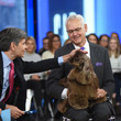 George Stephanopoulos and MIKE PITTS Photos