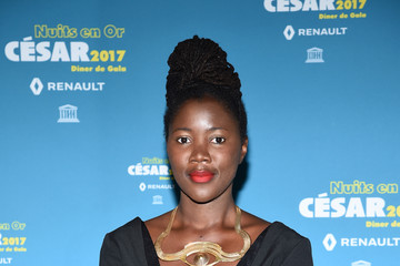 Alice Diop 'Les Nuits en Or 2017' Dinner Gala - Photocall At Unesco