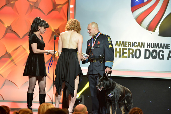 American Humane Association's 5th Annual Hero Dog Awards 2015 [dog,canidae,conformation show,event,dog breed,sporting group,junior showmanship,kennel club,carnivore,guard dog,actresses,pauley perrette,dax,christopher alberini,alicia witt,l-r,the beverly hilton hotel,american humane association,law enforcement dog category winner,5th annual hero dog awards]