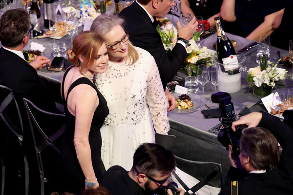 The 23rd Annual Screen Actors Guild Awards - Roaming Show [roaming show,event,ceremony,wedding,wedding reception,party,rehearsal dinner,formal wear,actors,meryl streep,amy adams,los angeles,california,the shrine auditorium,screen actors guild awards]