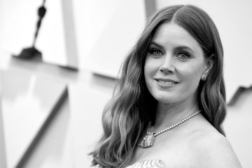 Amy Adams 91st Annual Academy Awards - Arrivals