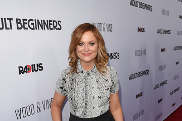 Amy Poehler Premiere of 'Adult Beginners' - Red Carpet