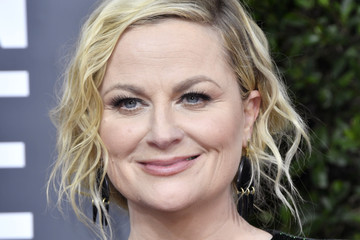 Amy Poehler 77th Annual Golden Globe Awards - Arrivals