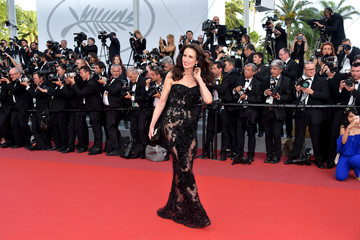 Andie MacDowell 'The Killing of a Sacred Deer' Red Carpet Arrivals - The 70th Annual Cannes Film Festival
