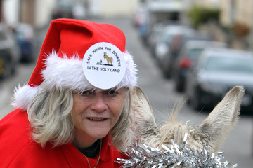 Ann Widdecombe Ann Widdecombe Supports A Christmas Campaign To Save Donkeys In The Holy Land