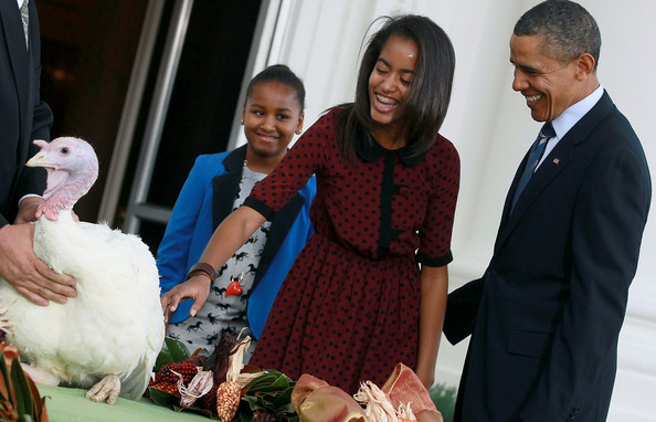 Barack Obama - Obama Pardons The National Thanksgiving Turkey