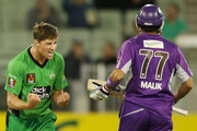 James Muirhead of the Stars celebrates the wicket of Shoaib Malik of the Hurricanes during the Big Bash League Semi Final match between the Melbourne Stars and the Hobart Hurricanes at Melbourne Cricket Ground on February 4, 2014 in Melbourne, Australia.