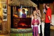 Prince Gabriel, Princess Eleonore, Princess Elisabeth, Queen Mathilde and King Philippe of Belgium visit Sealife on July 12, 2014 in Blankenberge, Belgium.