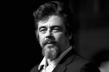 "Benicio Del Toro Premiere Of Warner Bros. Pictures' ""Inherent Vice"" - Arrivals"