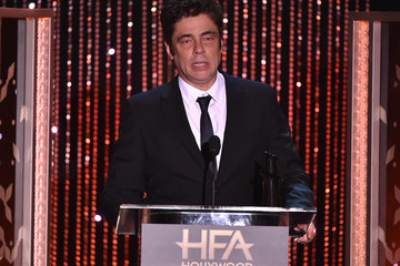 Benicio Del Toro 19th Annual Hollywood Film Awards - Show