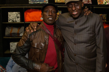 Bill Duke Excelsior! A Celebration Of The Amazing, Fantastic, Incredible And Uncanny Life Of Stan Lee