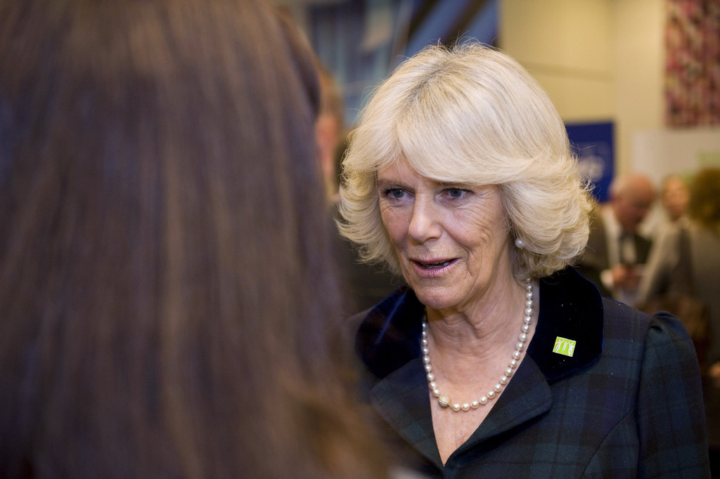 Camilla Parker Bowles In Camilla At A Children 39 S Benefit