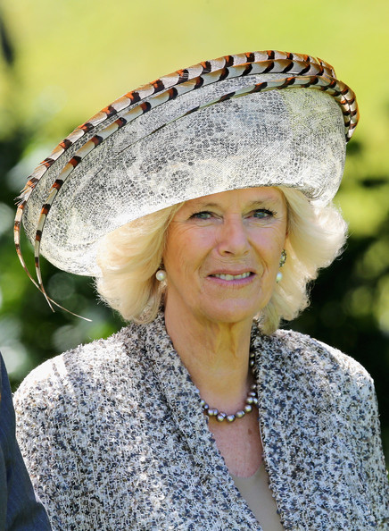 Camilla Parker Bowles Camilla, Duchess of Cornwall smiles at Government House on November 14, 2012 in Wellington, New Zealand. The Royal couple are in New Zealand on the last leg of a Diamond Jubilee that takes in Papua New Guinea, Australia and New Zealand.