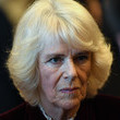 Camilla Parker Bowles The Prince Of Wales and The Duchess Of Cornwall Visit The Cabinet Office