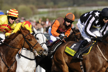 Imperial Commander Cheltenham Festival - Gold Cup Day