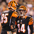 Andy Dalton Photos - Andy Dalton #14 of the Cincinnati Bengals congratulates Tyler Eifert #85 of the Cincinnati Bengals after scoring a touchdown during the first quarter of the game against the Cleveland Browns at Paul Brown Stadium on November 5, 2015 in Cincinnati, Ohio. - Cleveland Browns v Cincinnati Bengals