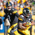 DeAngelo Williams Picture