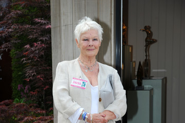 Dame Judi Dench Chelsea Flower Show - Press Day 2016