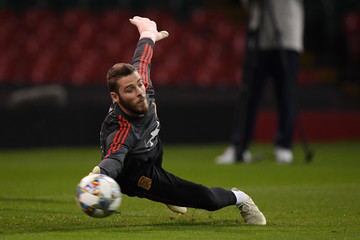 David de Gea Spain Training Session