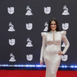Dayanara Torres 20th Annual Latin GRAMMY Awards - Arrivals