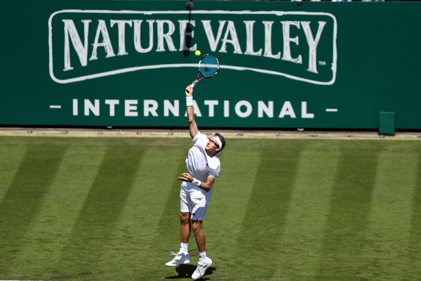 Image result for Nature Valley International tennis pic logo