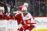 Frans Nielsen #51 of the Detroit Red Wings skates against the New York Islanders during the first period at the Barclays Center on December 19, 2017 in the Brooklyn borough of New York City.