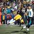 Marqise Lee Picture