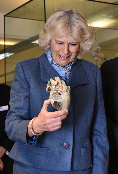 Camilla, Duchess of Cornwall handles a plasinated dog's heart on February 26, 2015 in London, United Kingdom. HRH The Duchess of Cornwall was on a visit to Beaumont Sainsbury Animal Hospital, at the Royal Veterinary College in Camden, North London, where she met staff, students and patients. Her visit enabled her to see how the Animal Care Trust (of which she is Patron) funds state of the art animal care.