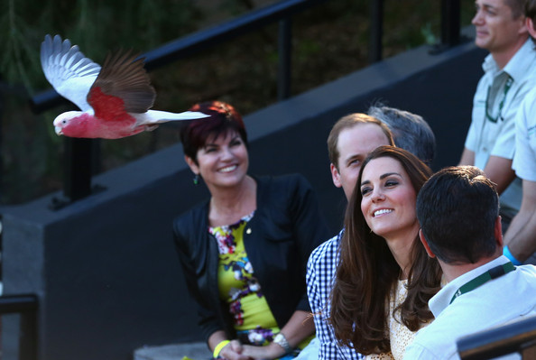 Prince William, Duke of Cambridge, and Catherine, Duchess of Cambridge, observe a Bird Show at Taronga Zoo on April 20, 2014 in Sydney, Australia. The Duke and Duchess of Cambridge are on a three-week tour of Australia and New Zealand, the first official trip overseas with their son, Prince George of Cambridge.