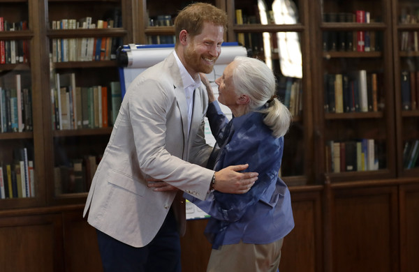The Duke Of Sussex Attends Dr. Jane Goodall's Roots And Shoots Global Leadership Meeting