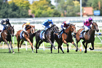 Fontein Ruby Melbourne Racing