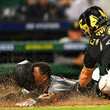 Francisco Cervelli Americas Sports Pictures Of The Week - April 29
