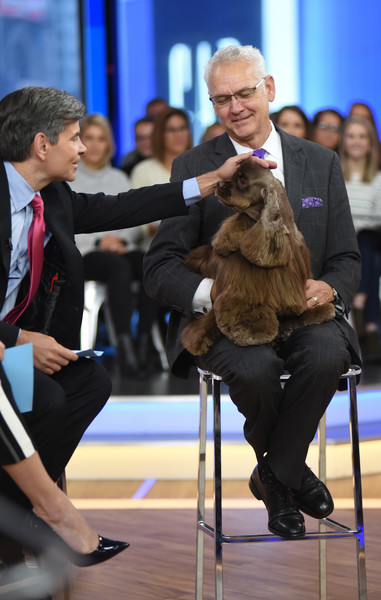 """ABC's """"Jimmy Kimmel Live"""" - Season 15 [season,jimmy kimmel live,good morning america,conformation show,dog,canidae,dog breed,companion dog,sporting group,junior showmanship,kennel club,carnivore,non-sporting group,striker,guest,winner,cocker spaniel,abc,getty images,akc national dog championship]"""