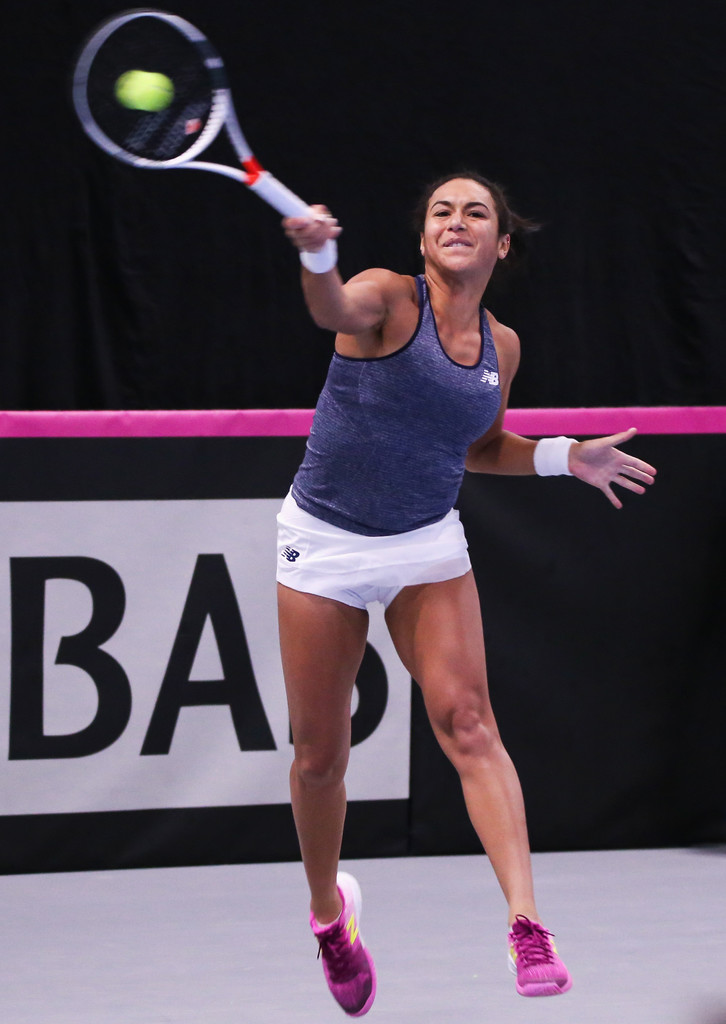 fed cup - photo #11