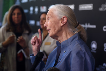 Jane Goodall 2017 Global Citizen Festival: For Freedom. For Justice. For All. - VIP Lounge