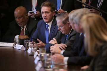 Jeff Flake President Trump Meets With Bipartisan Group of Senators on Immigration
