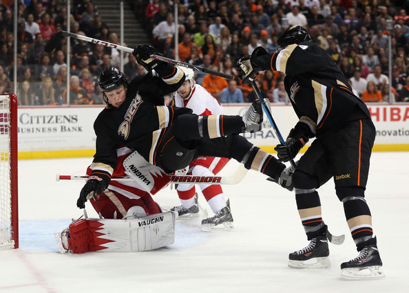 Detroit Red Wings v Anaheim Ducks